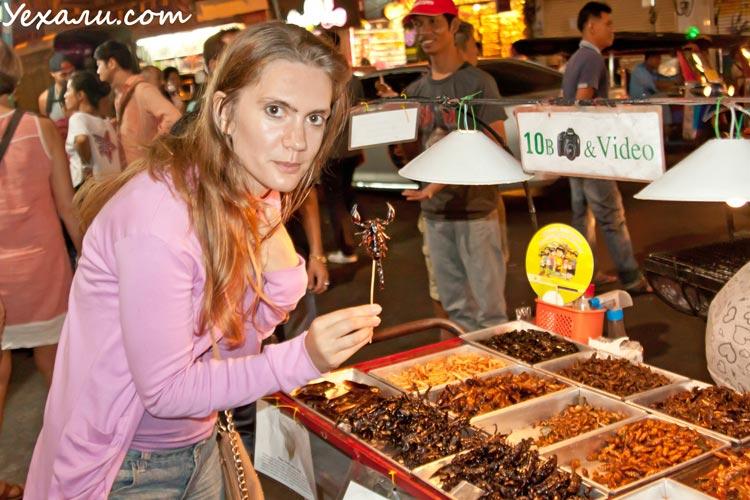 Жареные насекомые в Тайланде. Скорпион на палочке в Бангкоке