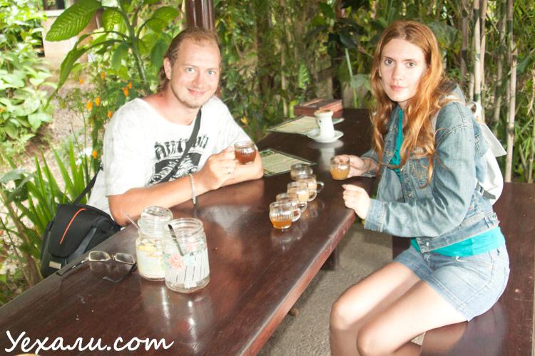 Путешествие на Бали, кофе Лювак, кофе из какашек