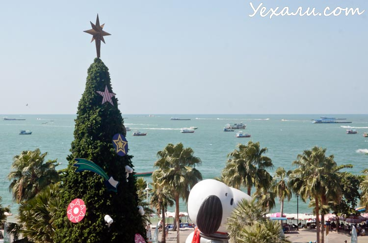 Новый год в Паттайе, фото: море, елка, собака какая-то