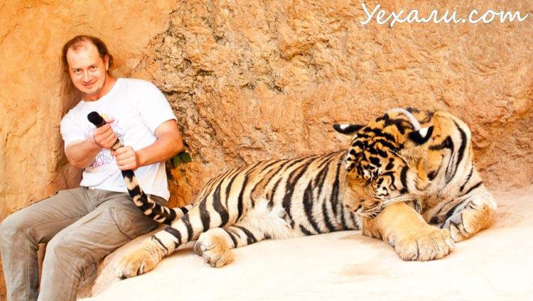Тигриный монастырь в Тайланде
