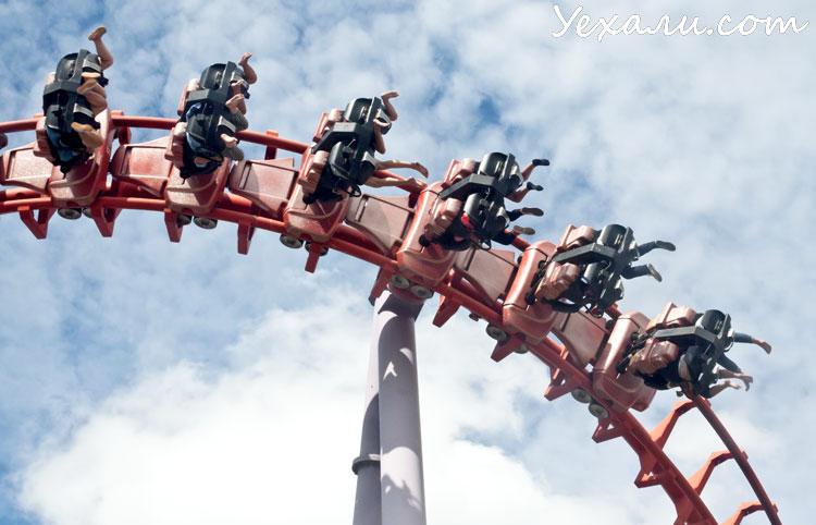 Лучшие экскурсии в Паттайе: Сиам Парк