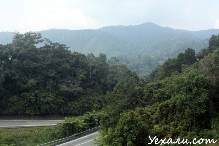 В Малайзию самостоятельно