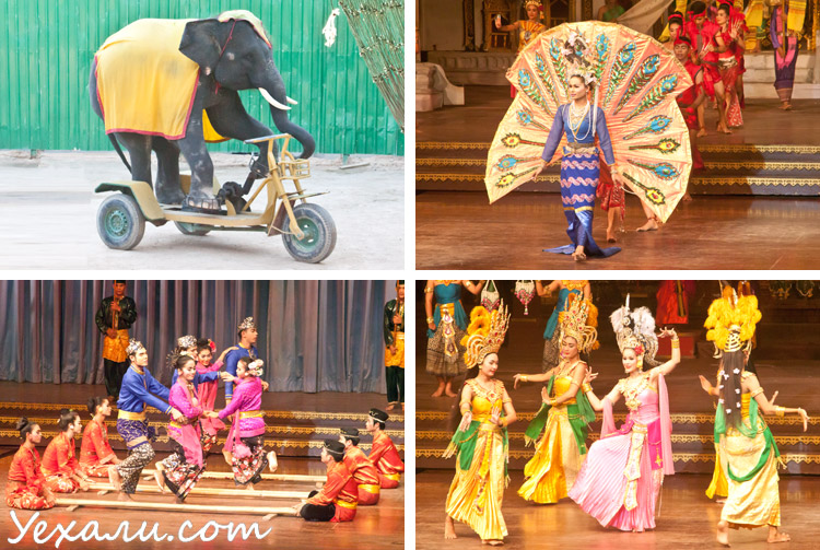 Все экскурсии в Паттайе: шоу