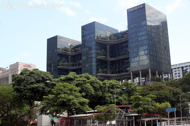 Отзывы о Сингапуре: отель Park Royal on Pickering