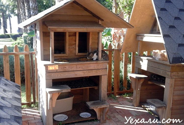 Аланья, набережная, домик для кошек.
