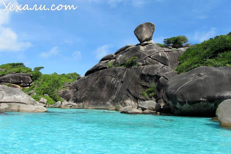 Пхукет или Паттайя: куда лучше поехать на отдых? Симиланские острова.