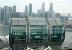 Красивые фото Сингапура – улицы, небоскребы, сады и лангусты по космической цене