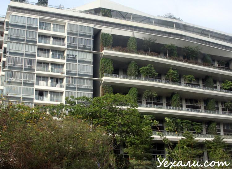 Отзывы про отдых в Сингапуре