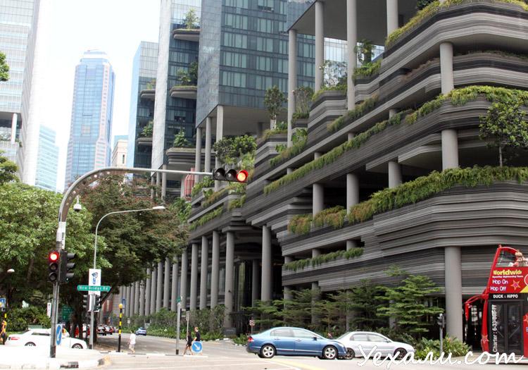 Отзывы о Сингапуре, фото.