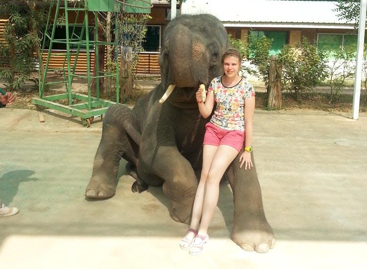 Катание на слонах на реке Квай