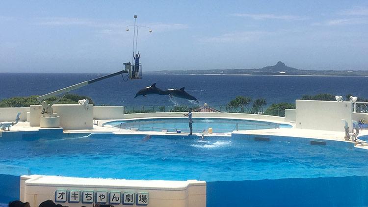 Достопримечательности Окинавы, Япония: океанариум Тюрауми.