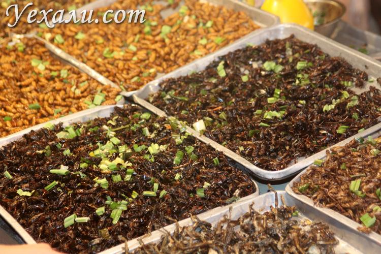 Жареные насекомые в Таиланде.