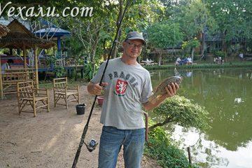 Рыбалка в Паттайе.