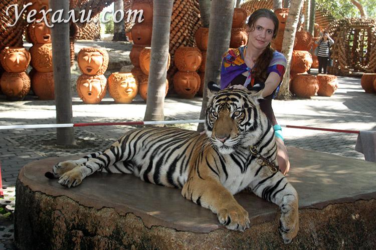 Тигры в Паттайе