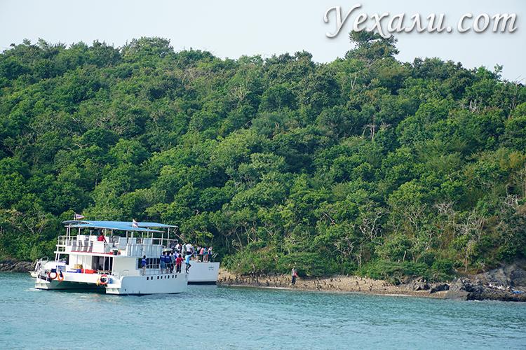 Остров обезьян во время экскурсии Паттая Бей Круиз
