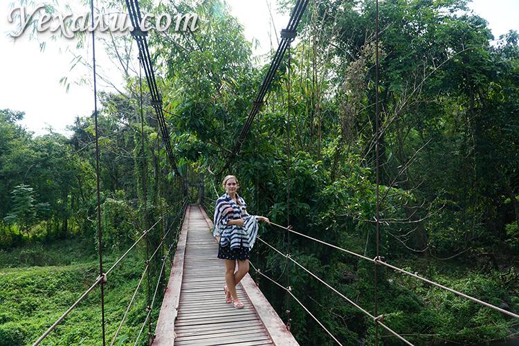 Подвесной мост, экскурсия Земля Королей и Альпака Парк