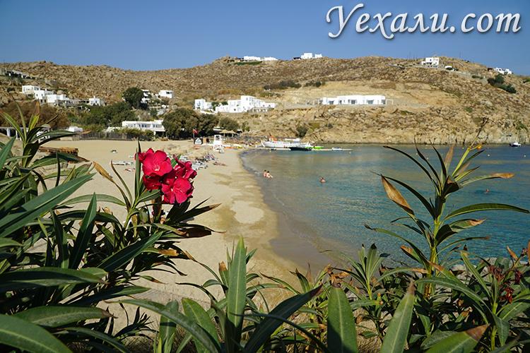 Панорамный вид на пляж Супер Парадайз на Миконосе, Греция