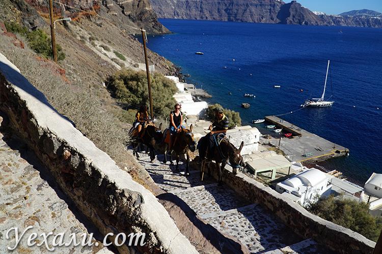 Фото города Ия на Санторини, Греция: подъем на осликах из порта.
