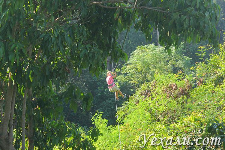 Экскурсия Полет Тарзана в Паттайе фото и отзывы