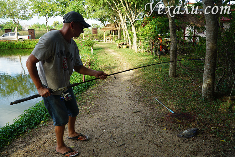 Рыбалка на озере в Паттайе цена, отзывы, фото