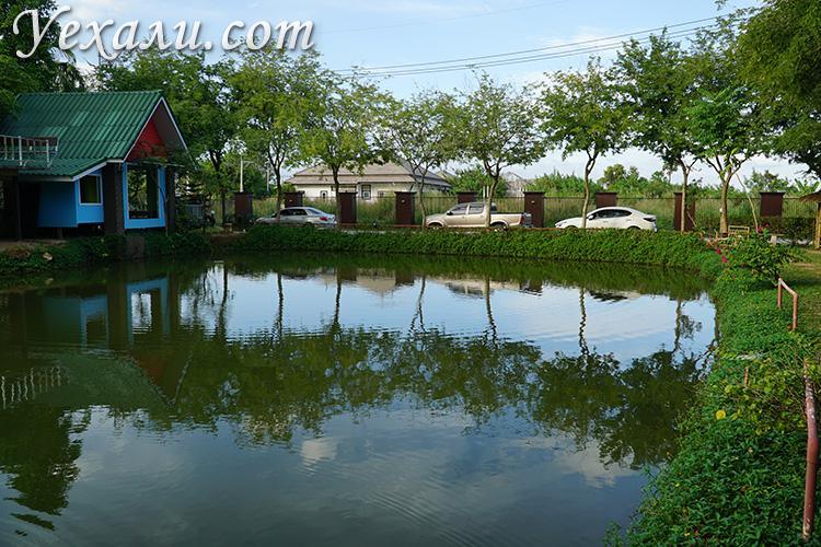 Озерная рыбалка в Паттайе фото и отзывы