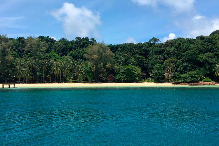 Экскурсии на острова из Паттайи что выбрать