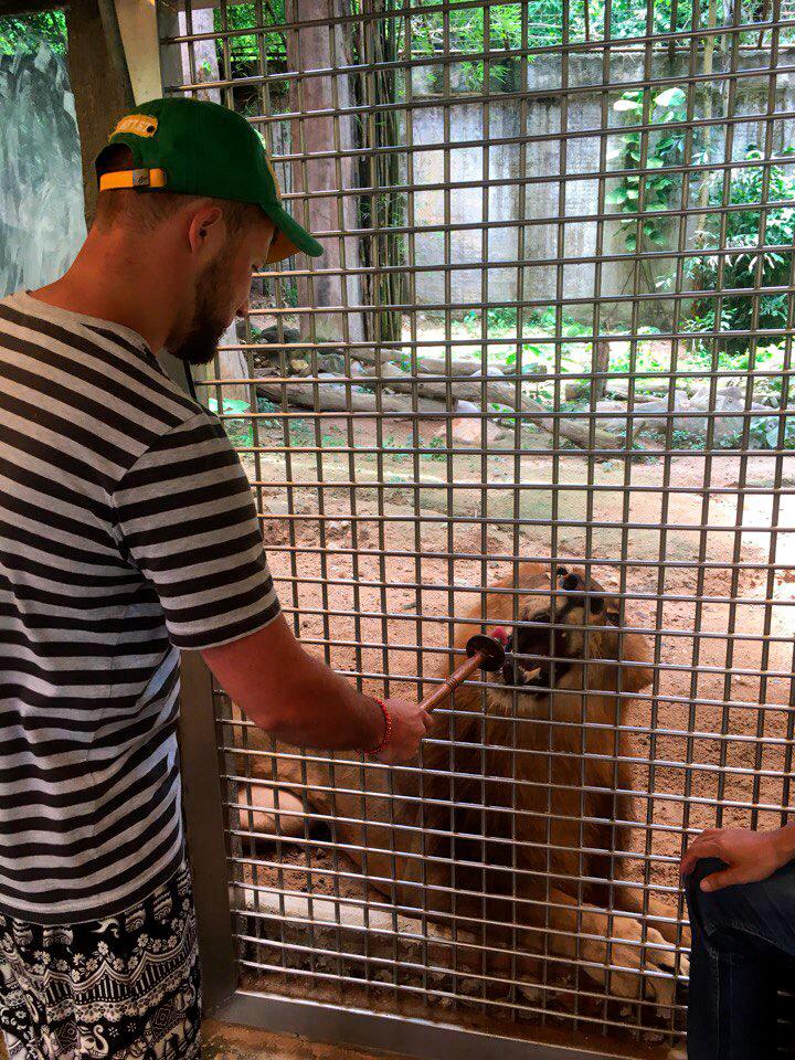 Экскурсия в зоопарк Као Кео, Паттайя.