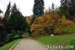 Идете на Петршинский холм в Праге? Только пешком!