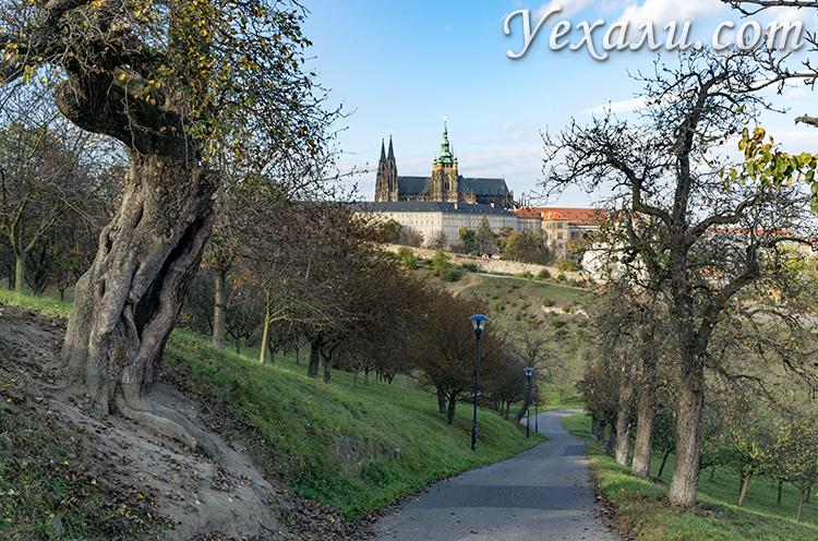 Лучшие обзорные площадки Праги: Петршинский холм.