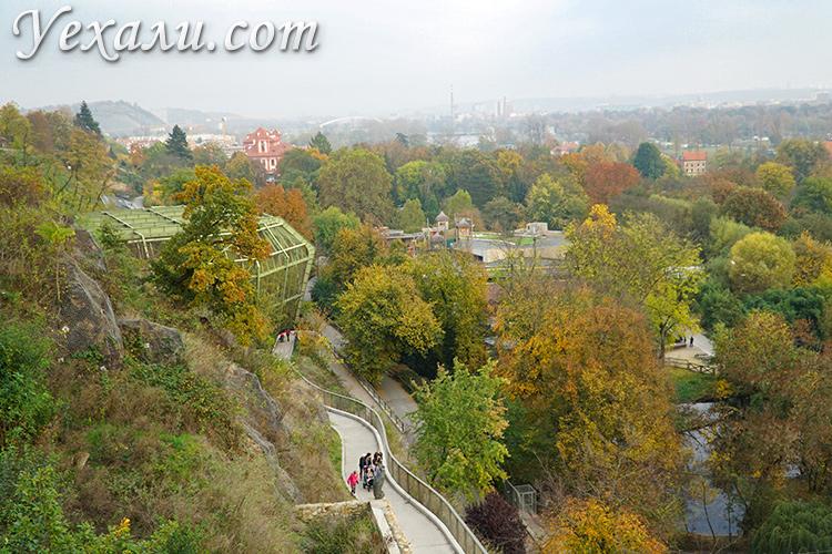 На фото: Пражский зоопарк, Чехия.