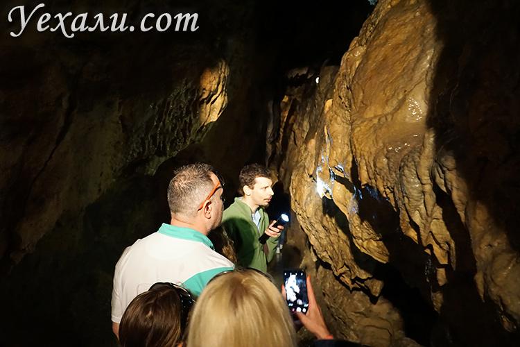 Пещера Пальвелди в Будапеште