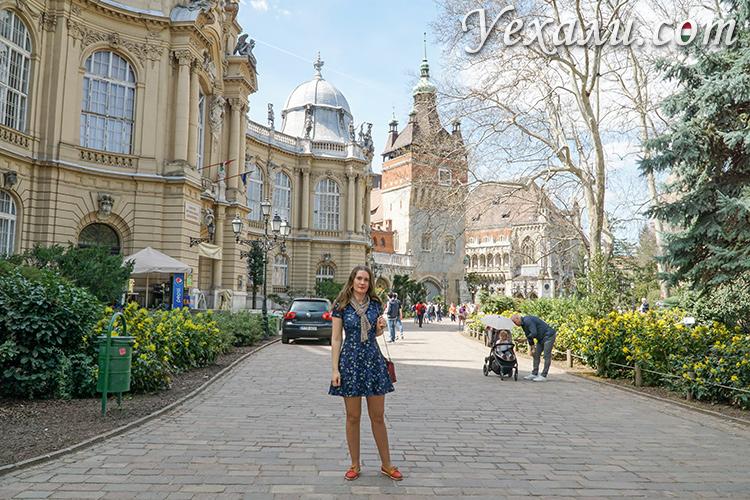 Сколько взять денег на двоих на семь дней в Будапешт