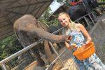 «Что делают слоны, когда приходят на поле?» Отзыв о поездке в Паттайю от нашей читательницы