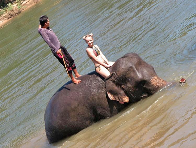 Отзыв о плавании со слонами в Таиланде