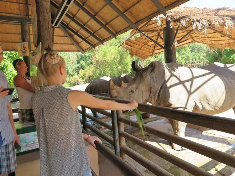 Поездка в Као Кео фото и отзывы туристов