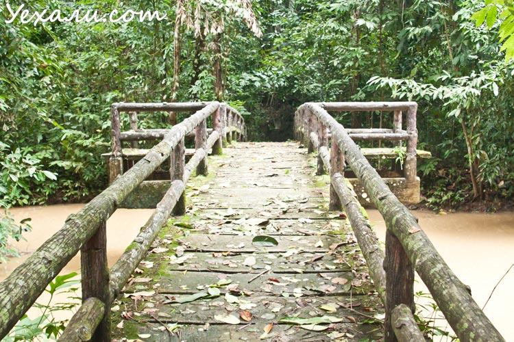 Национальный парк Танбоккорани, Краби, Тайланд
