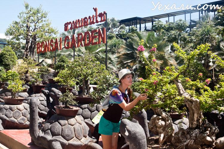 Тропический сад Нонг Нуч в Паттайе, фото