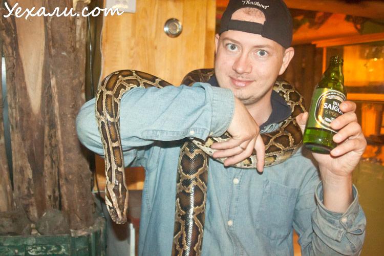 Pet Cafe в Ханое, кафе с животными в Ханое