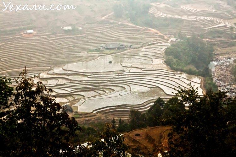 Сапа, рисовые террасы зимой