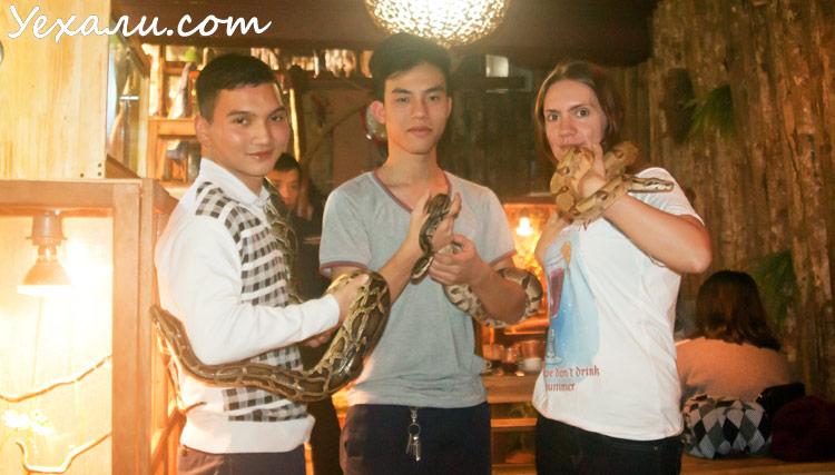 Pet Cafe в Ханое