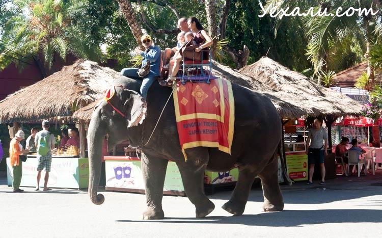 Переехать жить в Таиланд