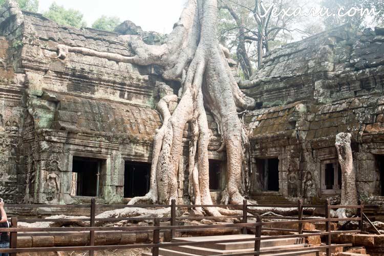 Камбоджа, храмы Ангкора, фото