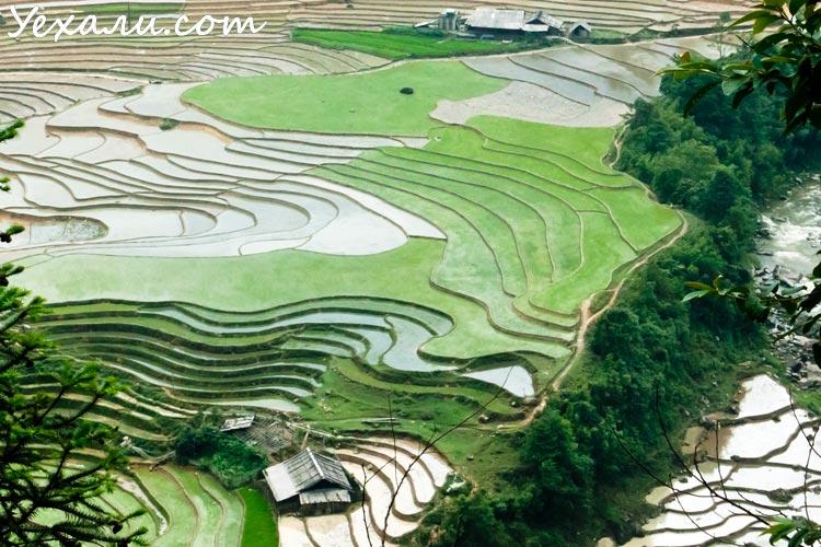 Вьетнам. Рисовые террасы в Сапе