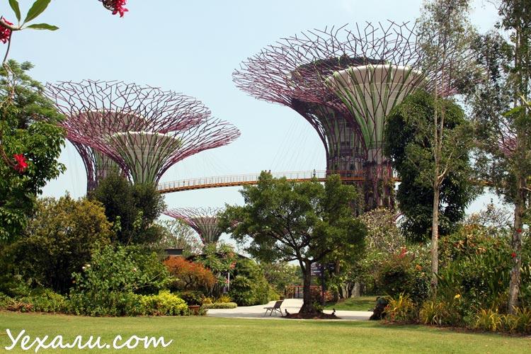 Из Паттайи в Сингапур самостоятельно