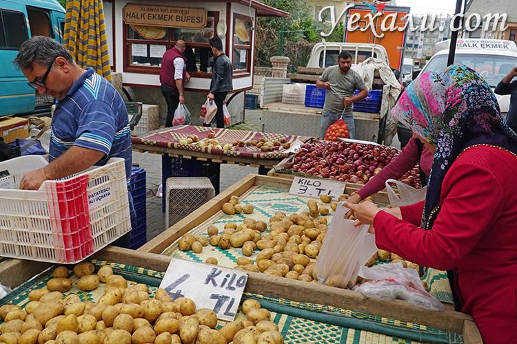 Цены на продукты в Турции: рынки Махмутлара.