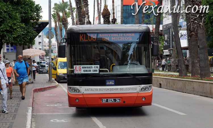 Автобус до водопада Нижний Дюден