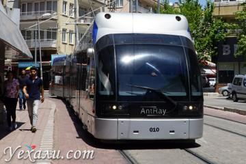 Сколько стоит проезд в автобусах и трамваях Анталии
