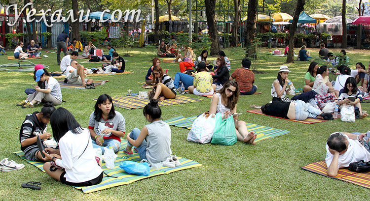 Парк Чатучак в Бангкоке
