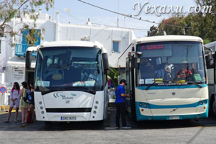 Путеводитель по острову Миконос в Греции: общественный транспорт.