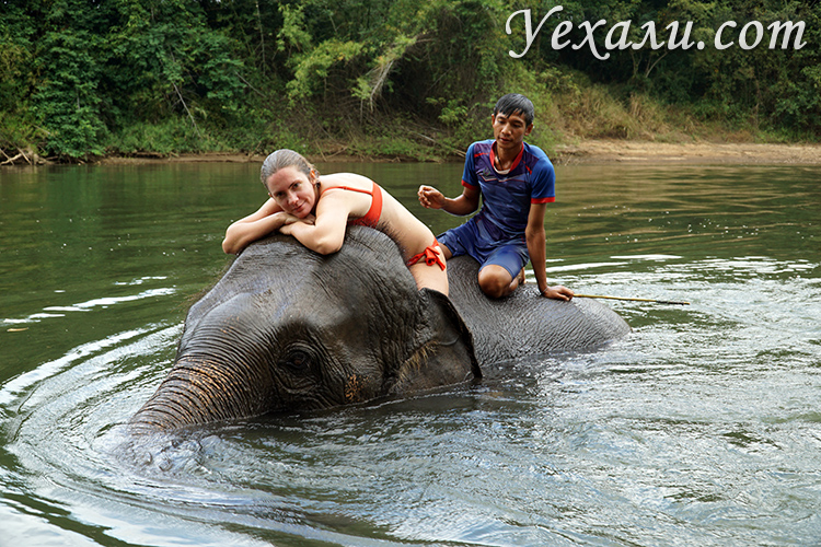 Экскурсия на Квай купание со слонами